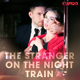 The Stranger on the Night Train