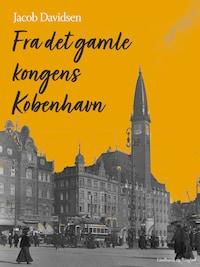 Fra det gamle kongens København