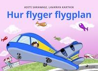 Hur flyger flygplan