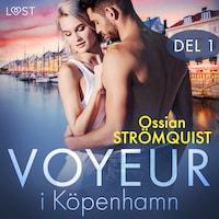 Voyeur i Köpenhamn del 1 - erotisk novell