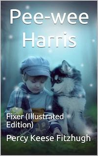 Pee-wee Harris: Fixer