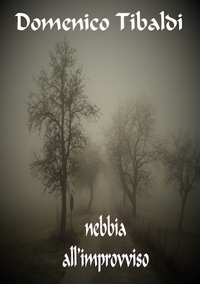 Nebbia all'improvviso