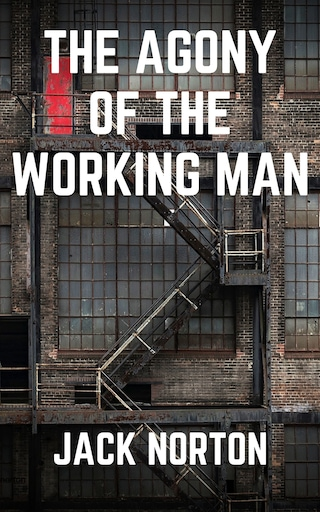 The Agony Of The Working Man