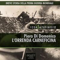 Breve storia della Prima Guerra Mondiale vol. 5 - L'orrenda carneficina