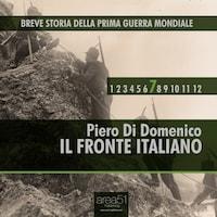 Breve storia della Prima Guerra Mondiale vol. 7 - Il fronte italiano