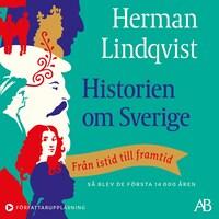 Historien om Sverige : Från istid till framtid: så blev de första 14000 åren