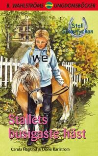 Stall Silverlyckan del 5 - Stallets busigaste häst