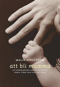 Att bli mamma. Tankar och känslor kring att vänta, föda och leva med barn av Malin Bergström