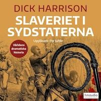 Slaveriet i Sydstaterna