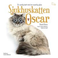 Sjukhuskatten Oscar : En vanlig katt med en ovanlig gåva