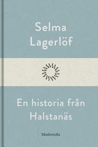 En historia från Halstanäs
