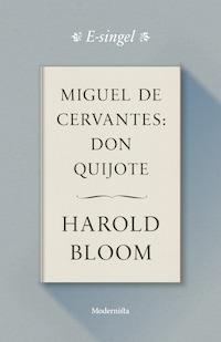 Miguel de Cervantes: Don Quijote