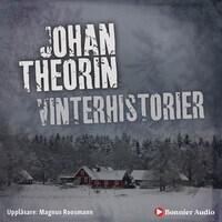 Vinterhistorier
