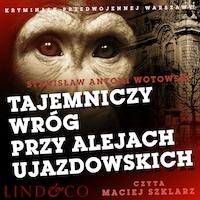 Tajemniczy wróg przy Alejach Ujazdowskich