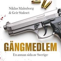 Gängmedlem : en annan sida av Sverige