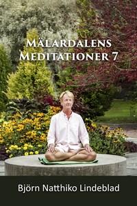Mälardalens Meditationer 7