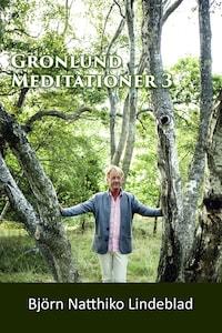 Grönlund Mediationer 3